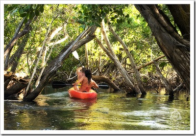 kayaking_rivieramaya_thumb