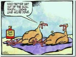 suntan_turkeys_thumb