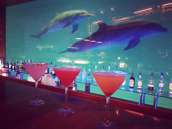 Great Seafood Restaurants In Cancun